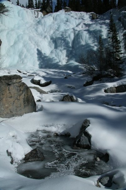 Frozen delight   - Sonny Alfredo Galea - Wild Wilderness Photography