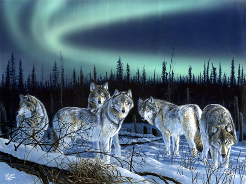 Des McCaffery  Artist Hunters