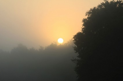 foggy_sunrise_191595
